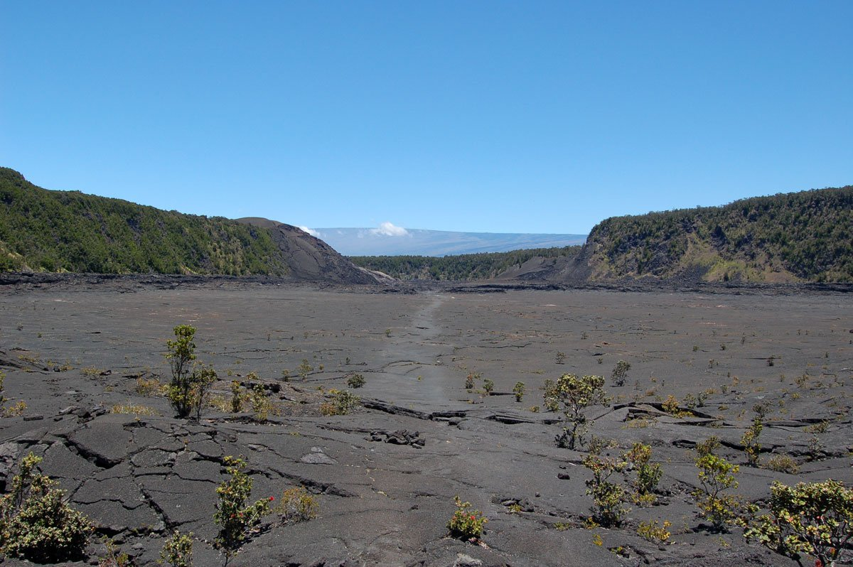 Kilauea Iki Trail Big Island Of Hawaii