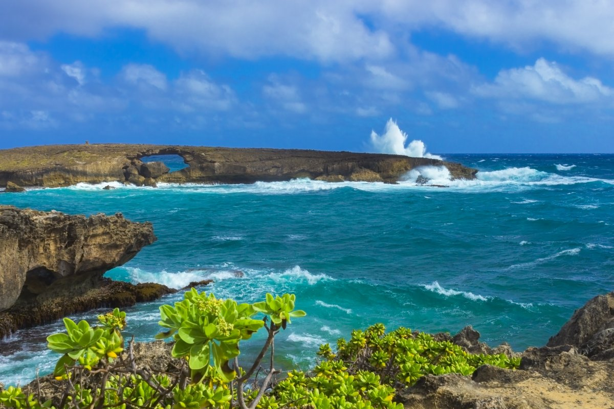 Top 5 Things To Do In Laie Oahu Hawaii