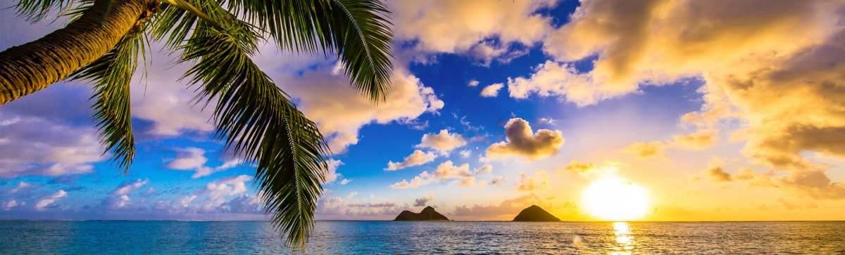 Best Time to Visit Hawaii - Updated for 2020